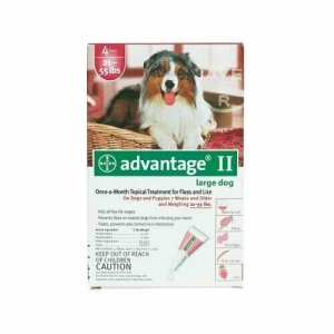 Flea Medicine for Dogs