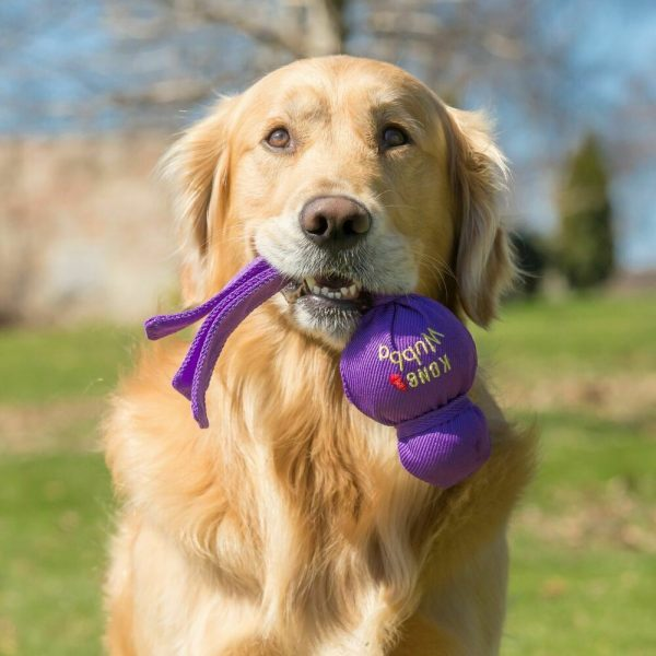 Squeak Toys for Dogs