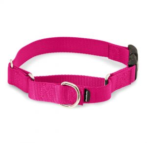 Martingale Collars for Dogs