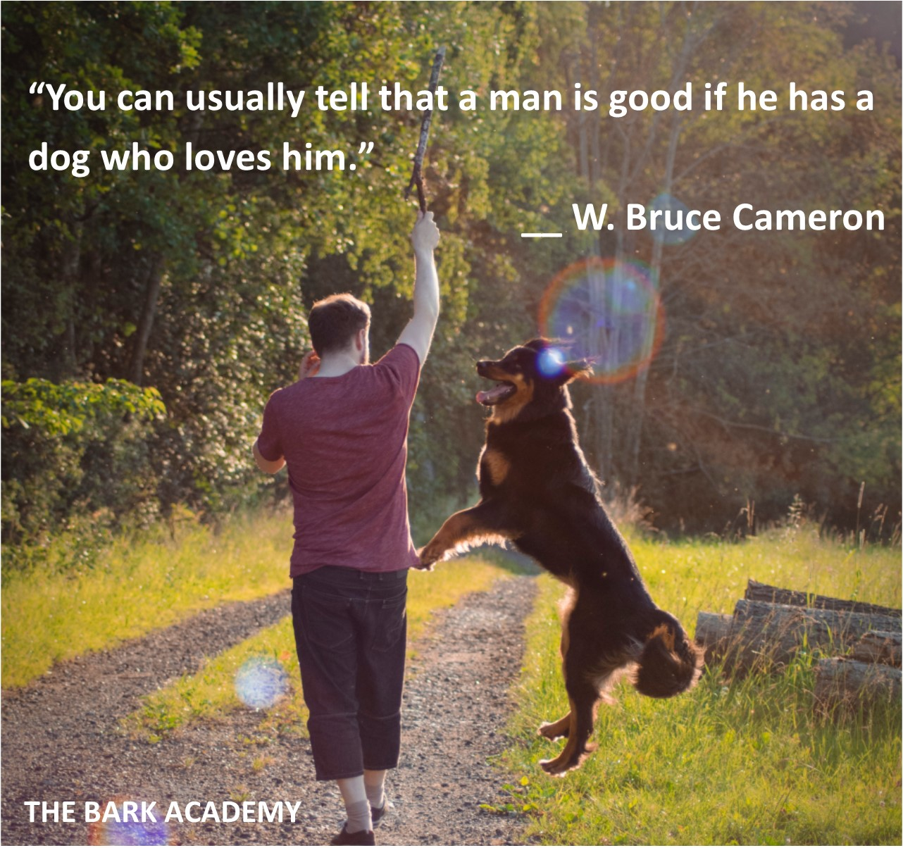Shop at The Bark Academy